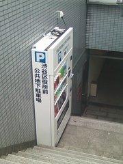 SN3K0057.JPG